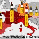 European Wine Production - La Produzione di vino in Europa