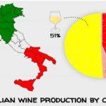 produzione-italiana-vino-per-colore