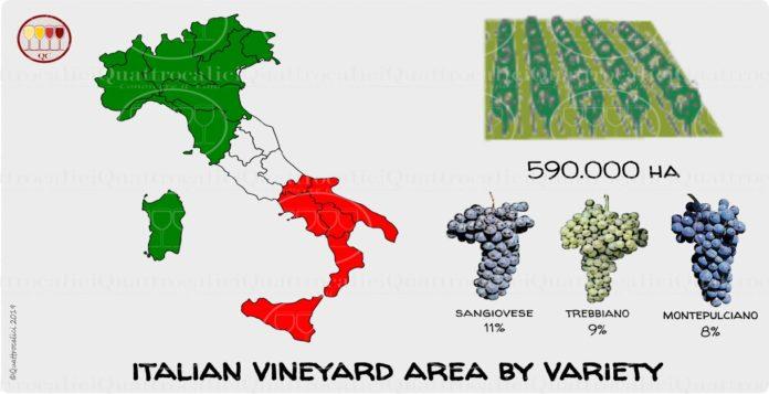 superficie vitata per vitigno