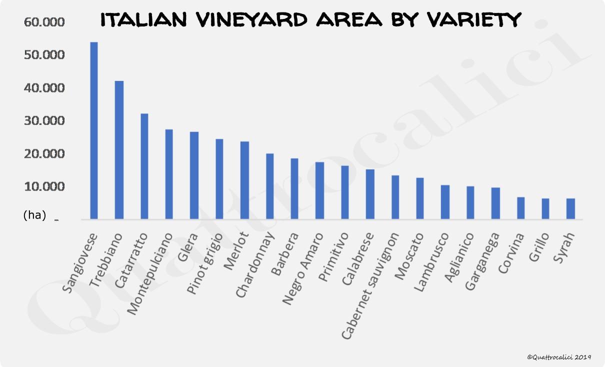 superficie-vitigno-grafico