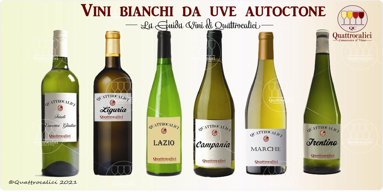 vini bianchi da uve autoctone guida vini