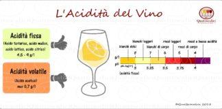 l'acidità del vino - gli acidi nel vino