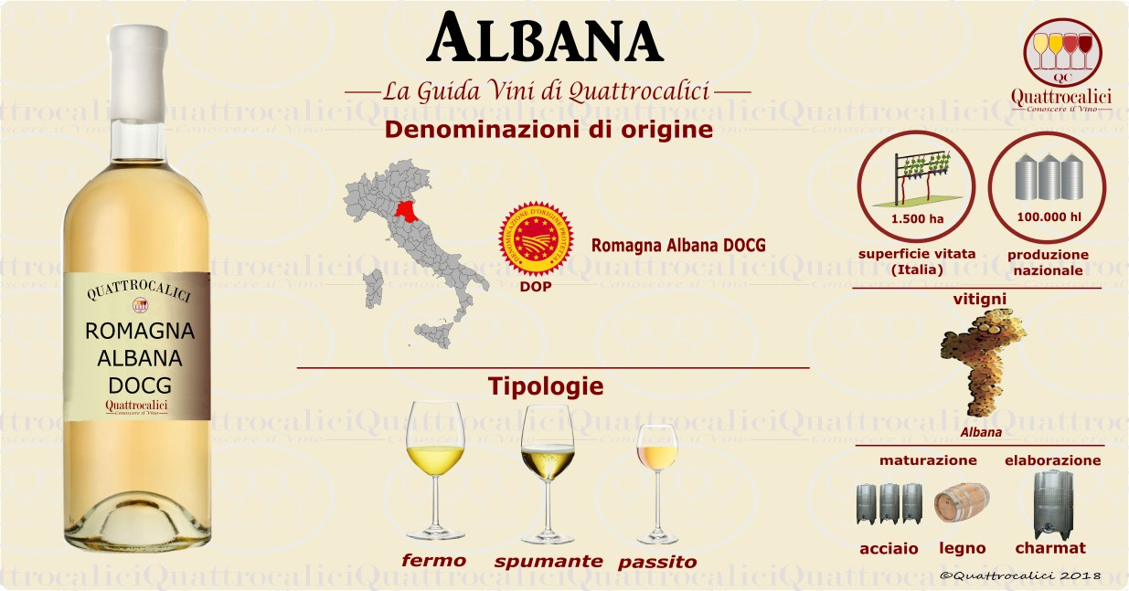 guida ai vini albana