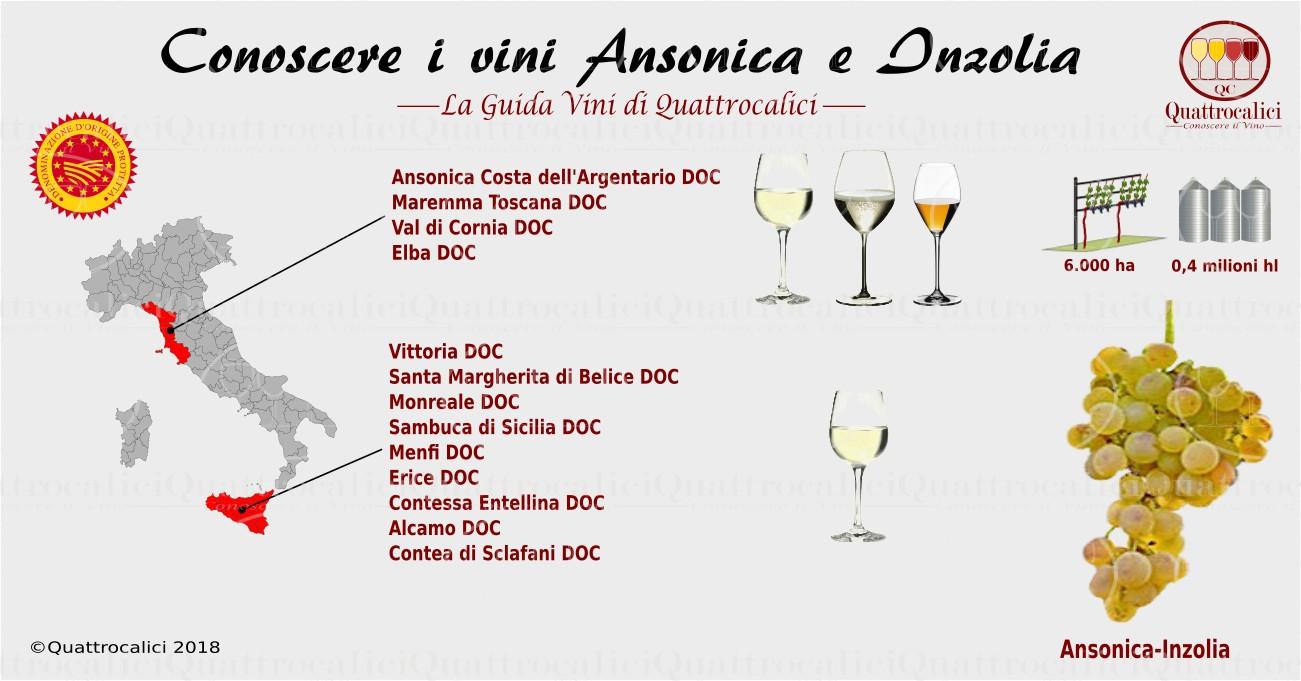 Conoscere l'Ansonica e l'Inzolia