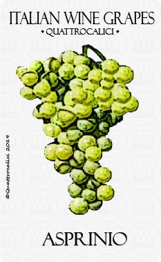 asprinio vitigno