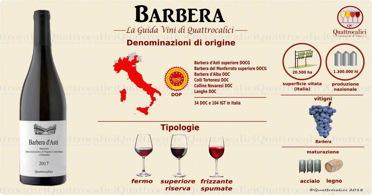 barbera-vino