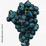 barsaglina vitigno