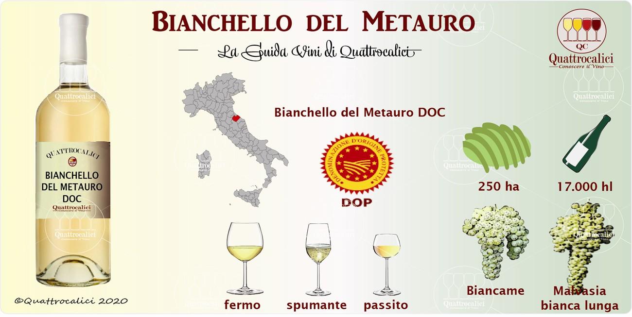 bianchello del metauro guida vini