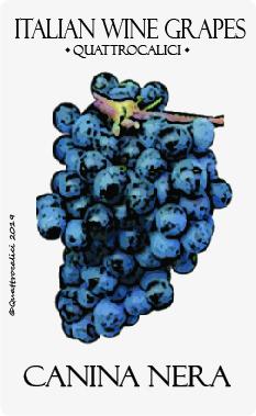 canina nera vitigno