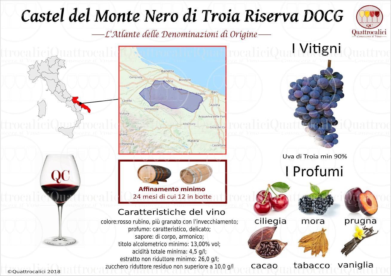 castel-del-monte-nero-di-troia-riserva-docg
