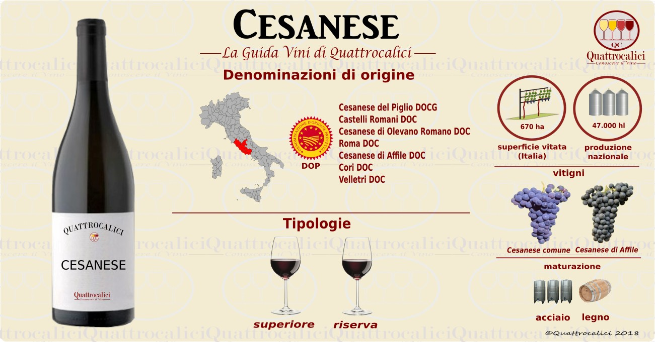 cesanese vino