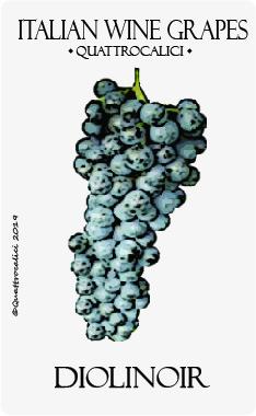 diolinoir vitigno