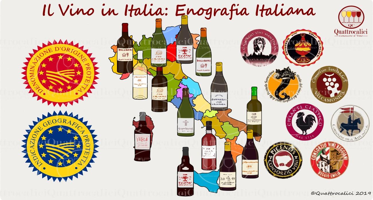 Enografia Italiana: Il Vino in Italia