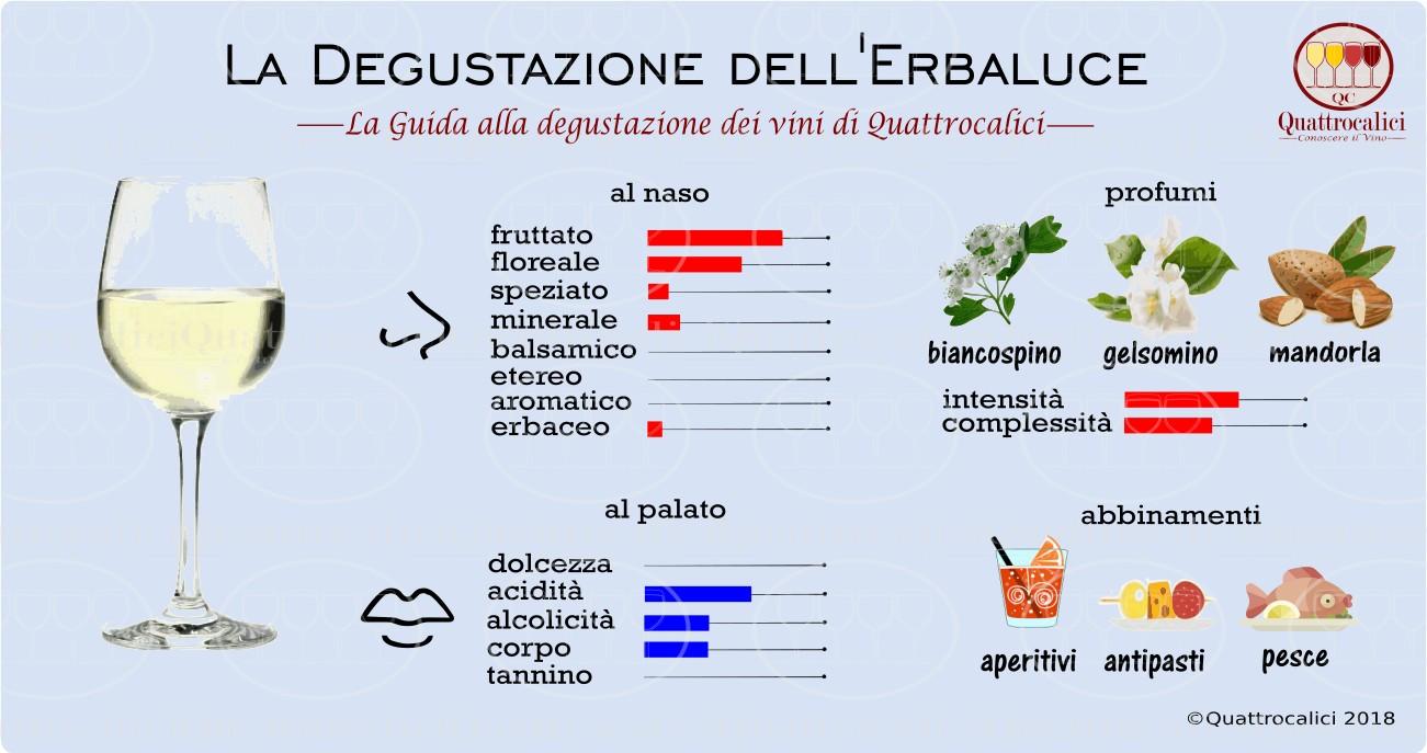 erbaluce-degustazione