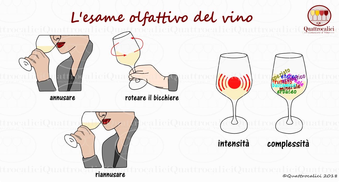 esame olfattivo vini
