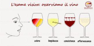 esame visivo osserviamo il vino