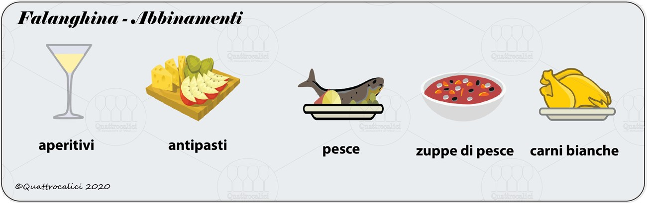 degustazione falanghina abbinamenti
