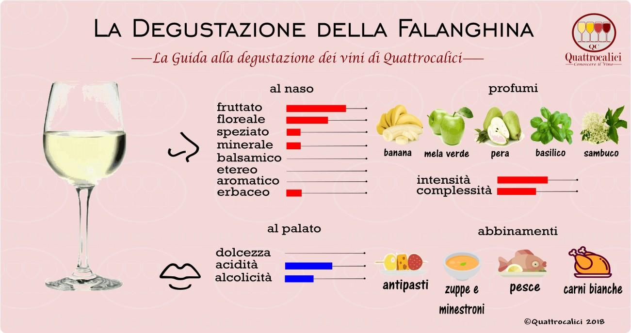 falanghina-degustazione