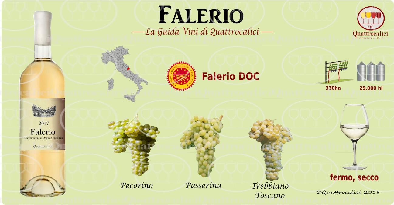 falerio-vino
