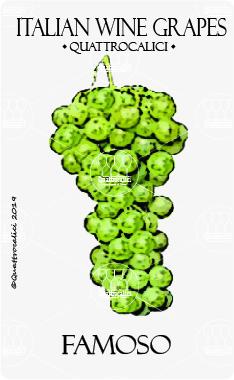 famoso vitigno
