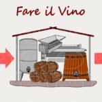 Fare il vino: dalla vendemmia alla bottiglia