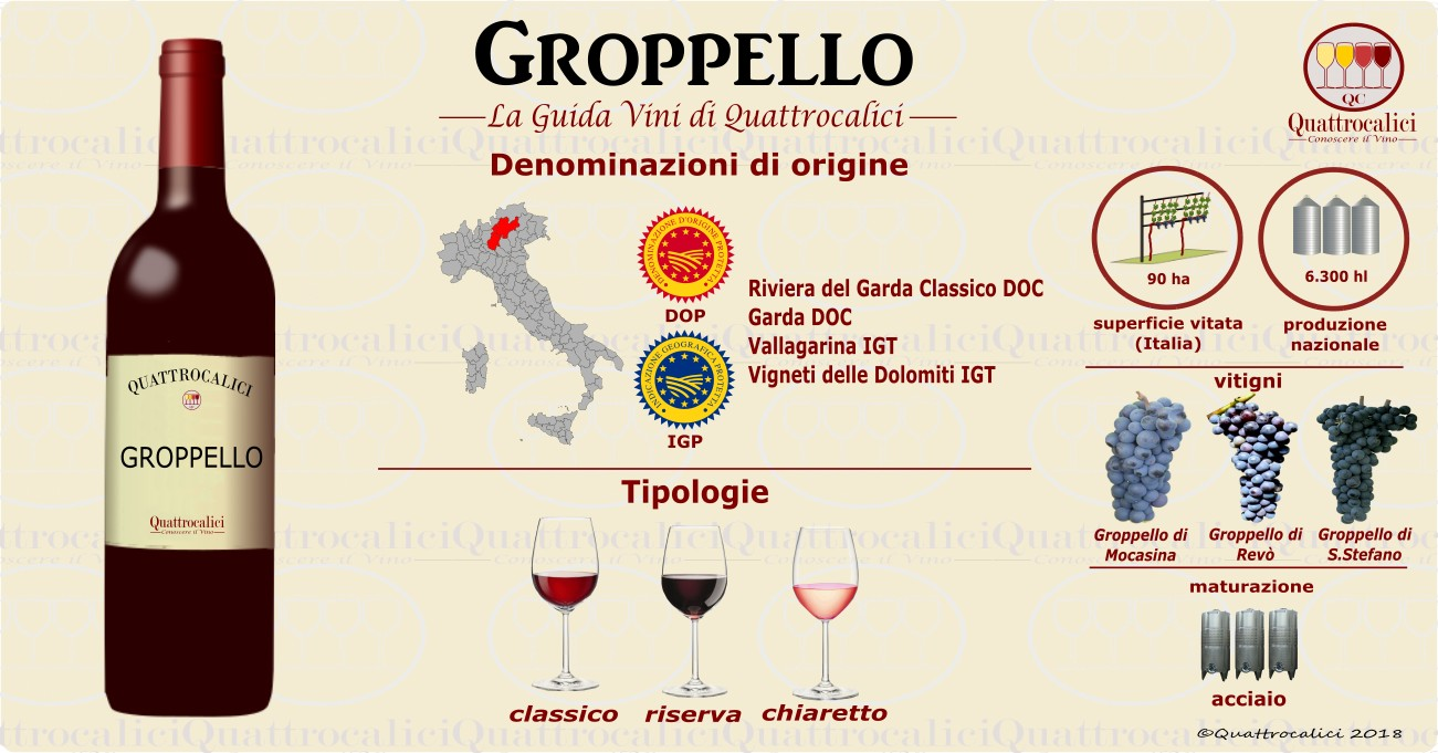 groppello-vino