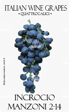 incrocio manzoni 2-14 vitigno