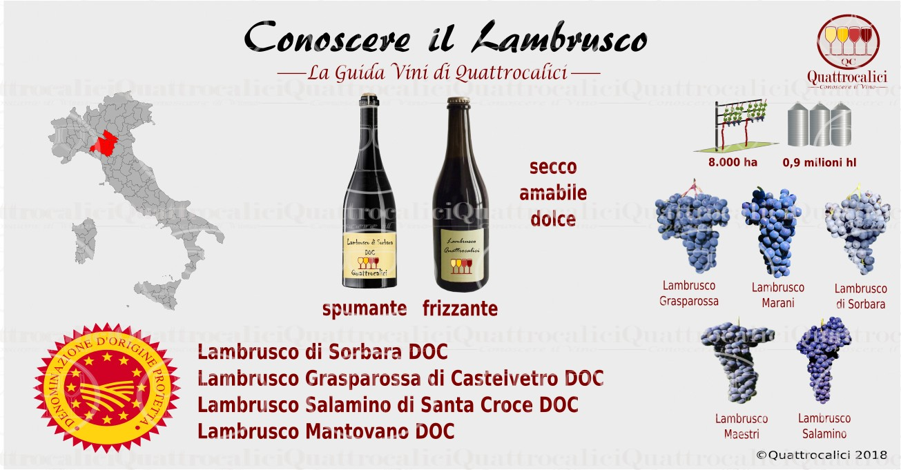 Conoscere il Lambrusco