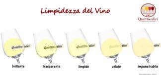 limpidezza del vino