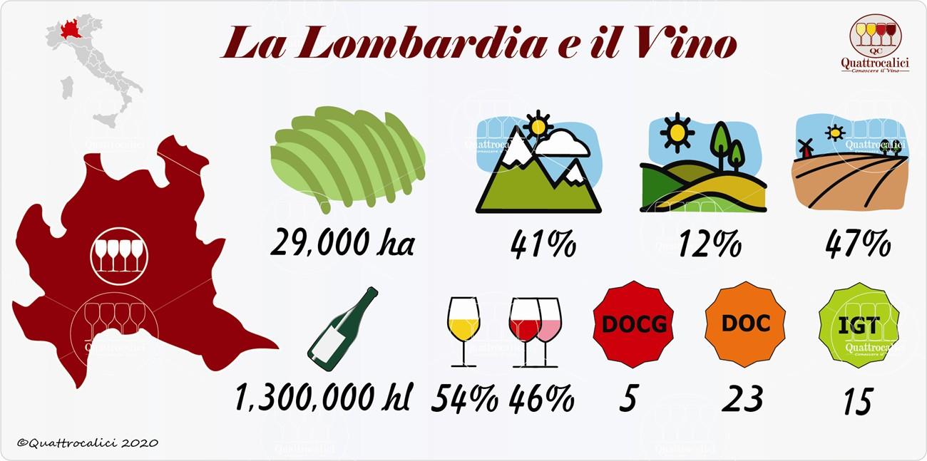 il vino e i vini in lombardia