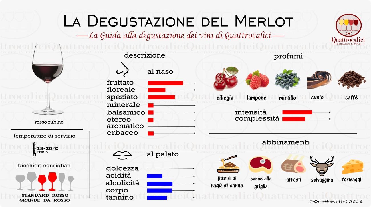 merlot degustazione vino