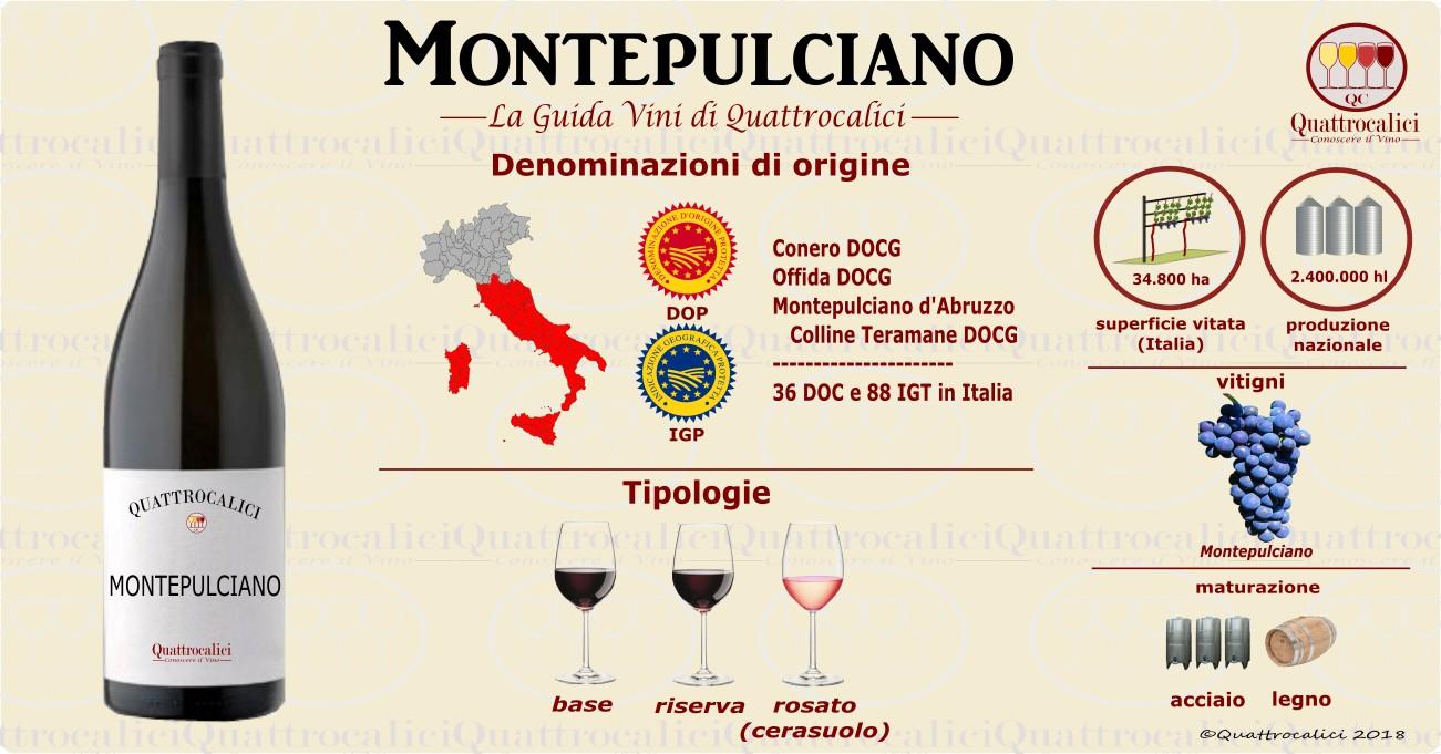 montepulciano vini