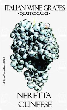 neretta cuneese vitigno