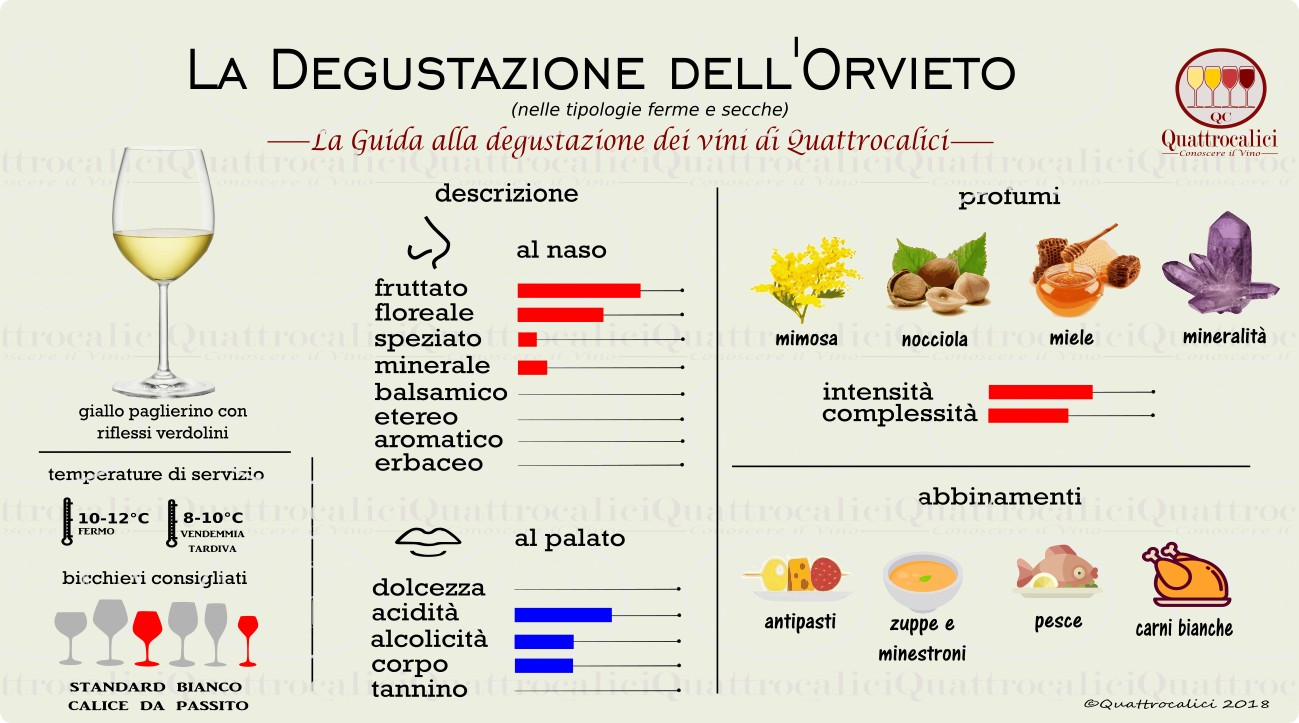 orvieto-degustazione