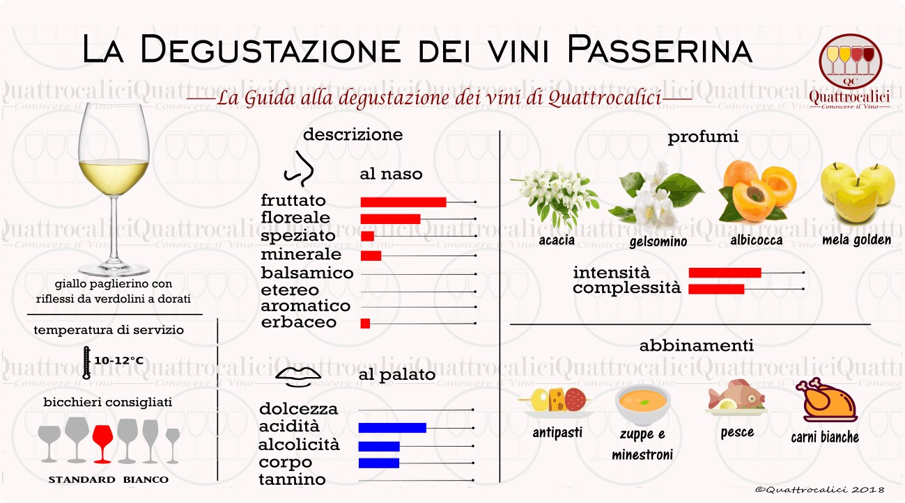 passerina-degustazione-vini