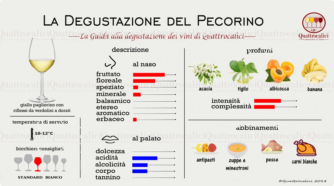 pecorino-degustazione-vino