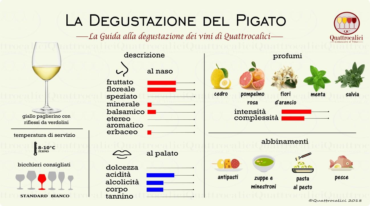 pigato-degustazione
