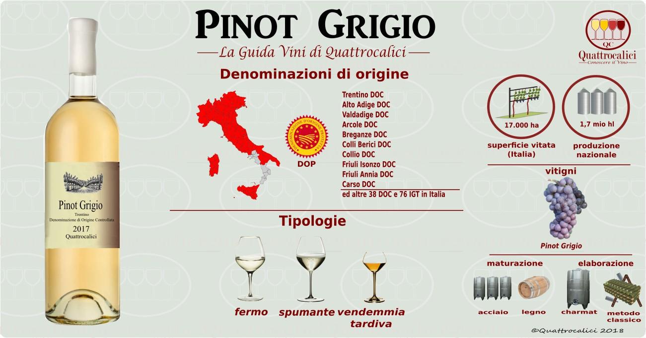 pinot-grigio-vini