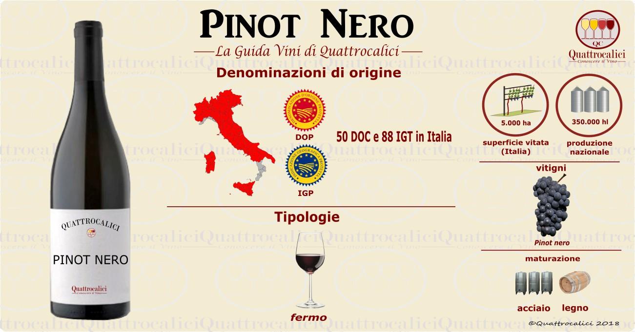 pinot nero vino