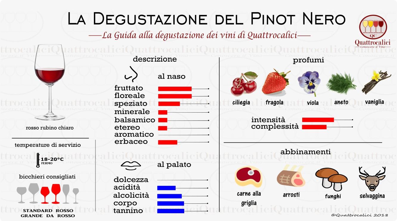 pinot nero degustazione vini
