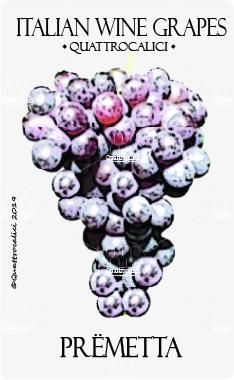 premetta vitigno
