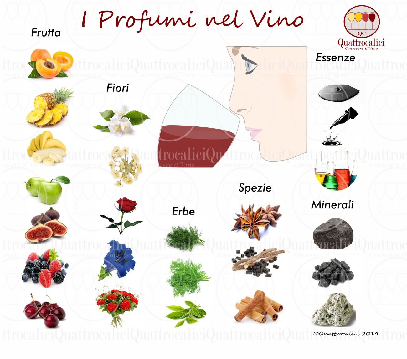 Profumi - Descrittori Olfattivi del Vino