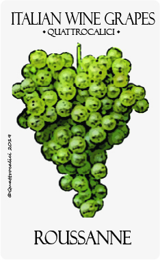 roussanne vitigno