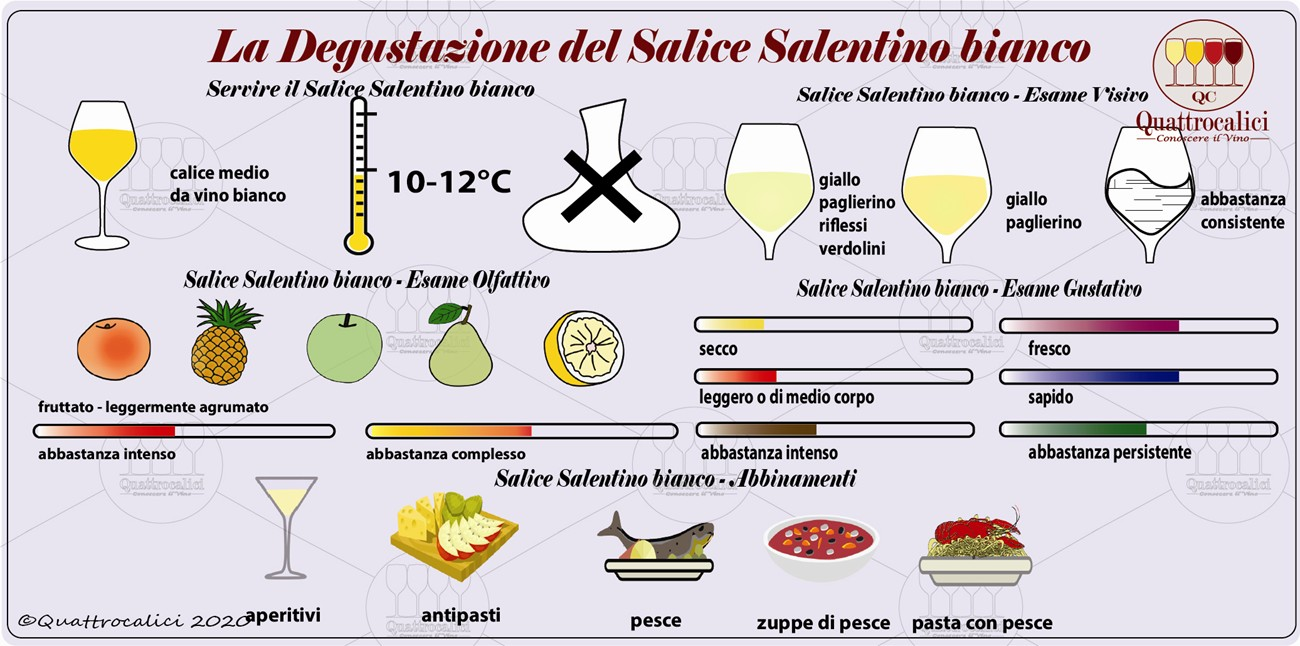 salice salentino bianco degustazione
