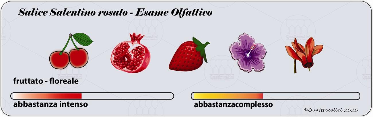 Salilce salentino rosato degustazione olfattivo