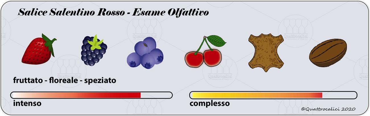 salice salentino rosso degustazione olfattivo
