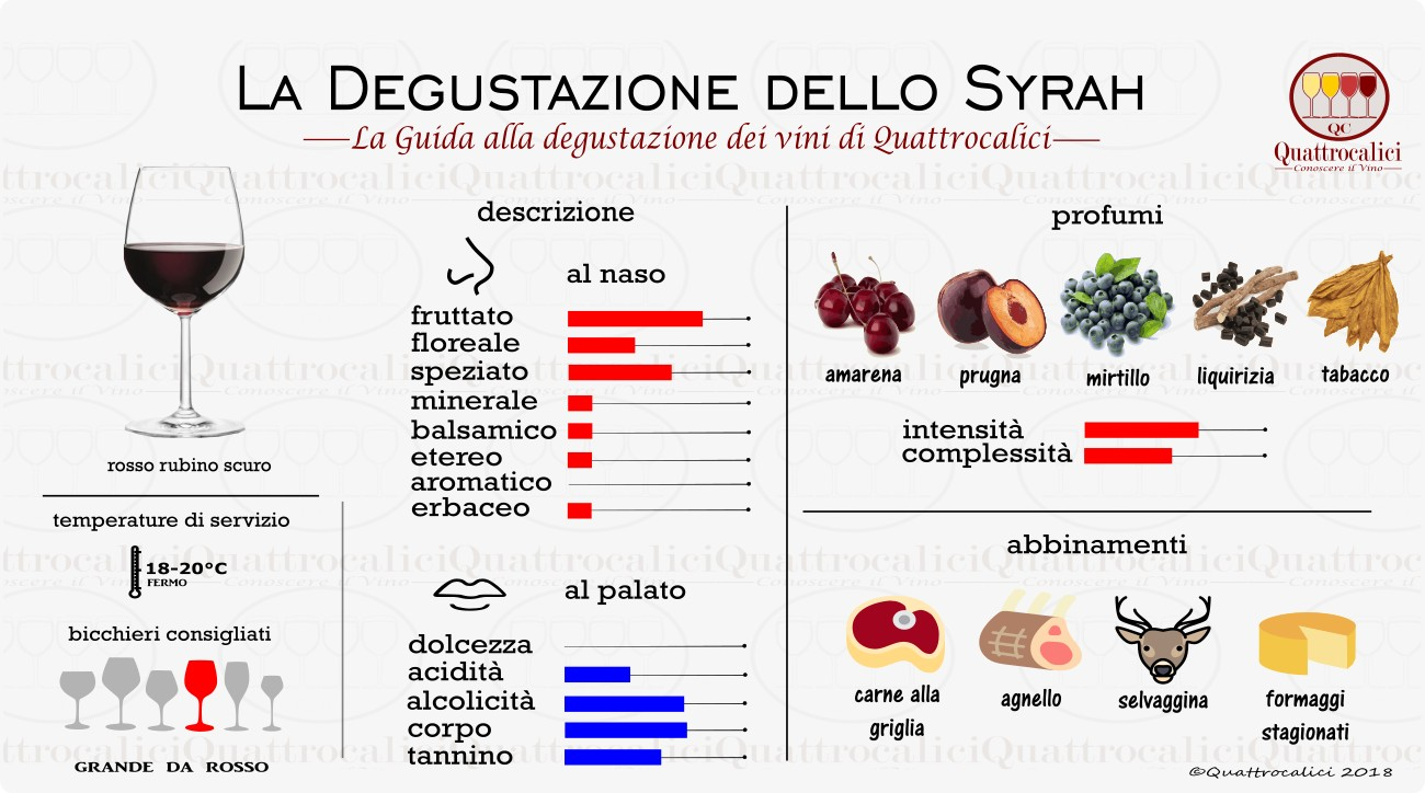syrah degustazione vino
