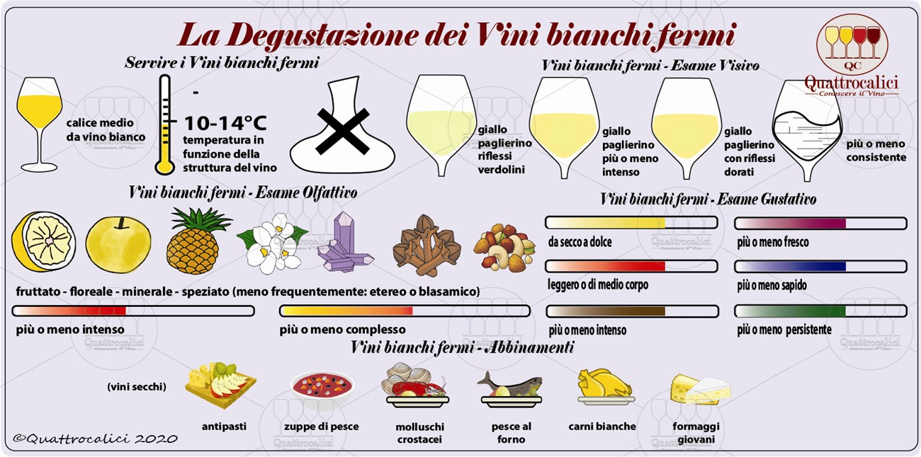 vini bianchi fermi degustazione