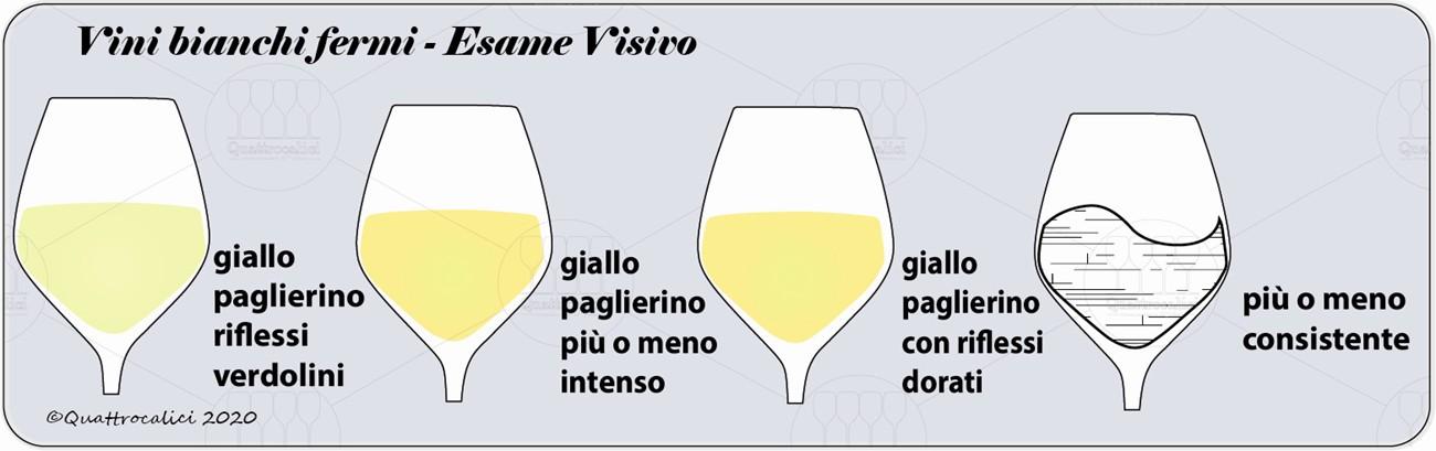 vini bianchi fermi degustazione visivo