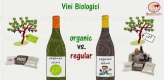 Vini biologici